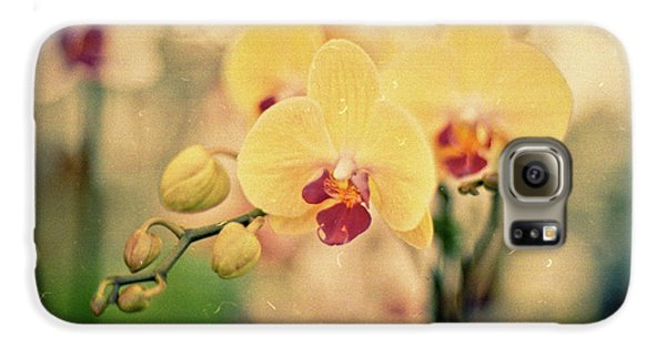 Galaxy S6 Case featuring the photograph Yellow Orchids by Ana V Ramirez