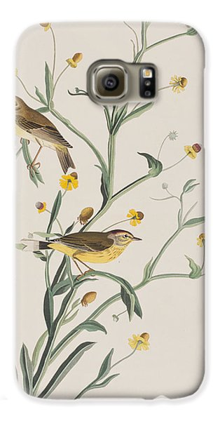 Yellow Red-poll Warbler Galaxy S6 Case by John James Audubon