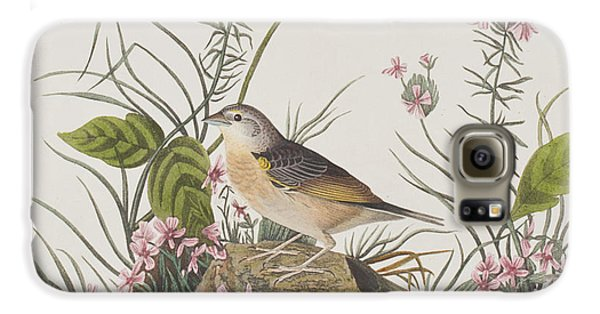 Yellow-winged Sparrow Galaxy S6 Case by John James Audubon