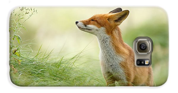 Mammals Galaxy S6 Case - Zen Fox Series - Zen Fox by Roeselien Raimond