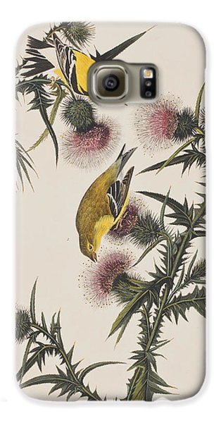 American Goldfinch Galaxy S6 Case by John James Audubon