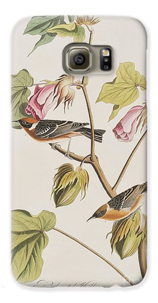 Bay Breasted Warbler Galaxy S6 Case by John James Audubon