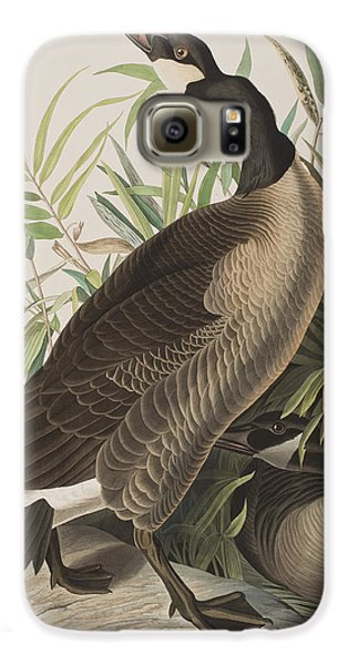 Canada Goose Galaxy S6 Case by John James Audubon