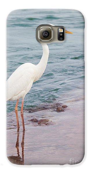 Great White Heron Galaxy S6 Case by Elena Elisseeva