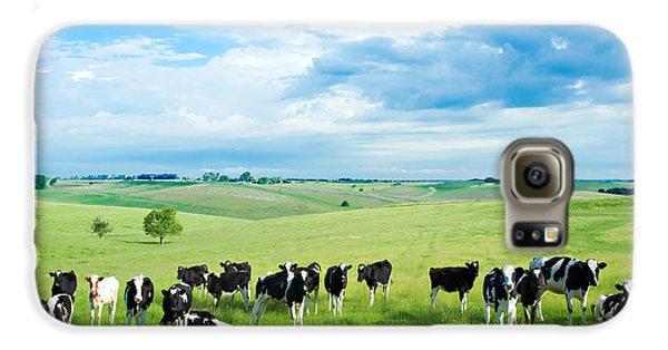 Cow Galaxy S6 Case - Happy Cows by Todd Klassy
