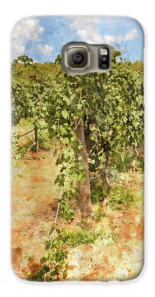 Napa Vineyard In The Spring Galaxy S6 Case