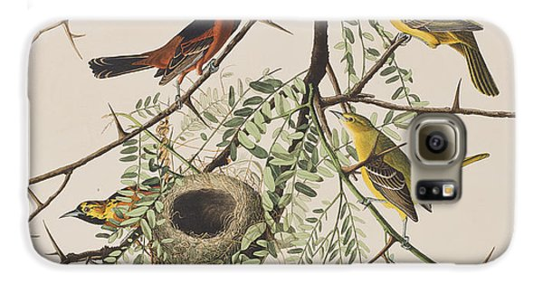 Orchard Oriole Galaxy S6 Case