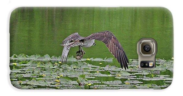 Osprey Fishing Galaxy S6 Case