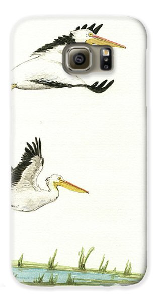 Pelican Galaxy S6 Case - The Fox And The Pelicans by Juan Bosco