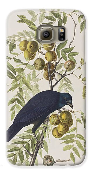 American Crow Galaxy S6 Case