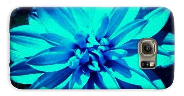 Summer Galaxy S6 Case - Flower by Katie Williams