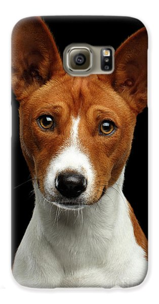 Pedigree White With Red Basenji Dog On Isolated Black Background Galaxy S6 Case by Sergey Taran