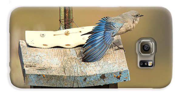 Spread Your Wings Galaxy S6 Case by Mike Dawson