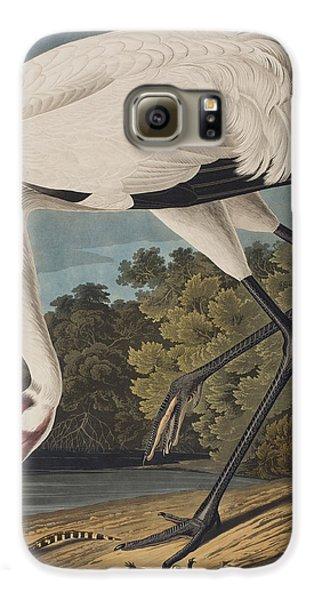 Stork Galaxy S6 Case - Whooping Crane by John James Audubon