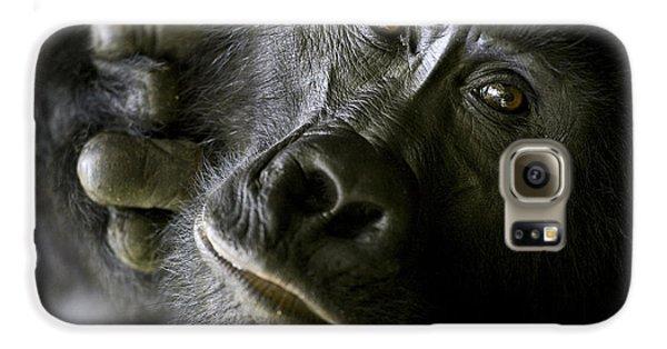 Gorilla Galaxy S6 Case - A Close Up Portrait Of A Mountain by Michael Poliza
