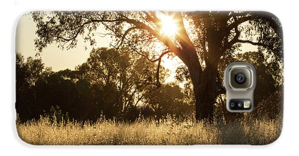 Galaxy S6 Case featuring the photograph A Golden Afternoon by Linda Lees