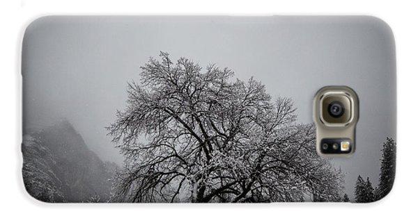 A Magic Tree Galaxy S6 Case by Lora Lee Chapman