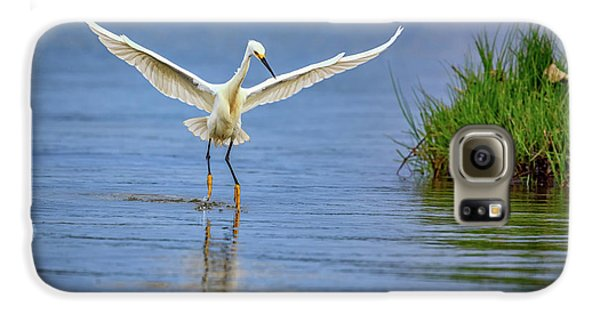 A Snowy Egret Dip-fishing Galaxy S6 Case by Rick Berk