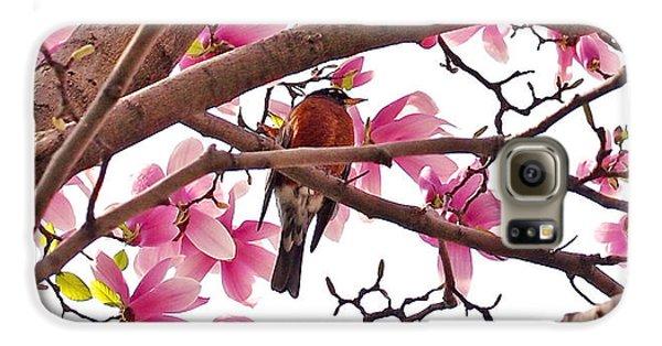 A Songbird In The Magnolia Tree - Square Galaxy S6 Case