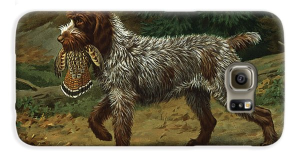 A Wire-haired Pointing Griffon Holds Galaxy S6 Case