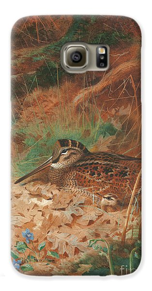 Woodcock Galaxy S6 Case - A Woodcock And Chick In Undergrowth by Archibald Thorburn