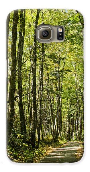 A Woodsy Trail Galaxy S6 Case