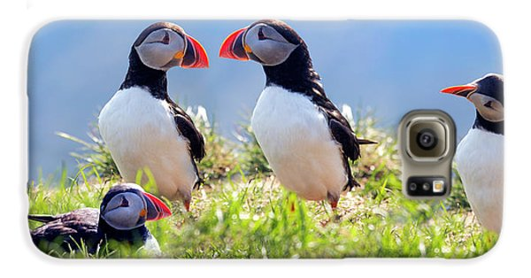 Puffin Galaxy S6 Case - A World Of Puffins by Betsy Knapp
