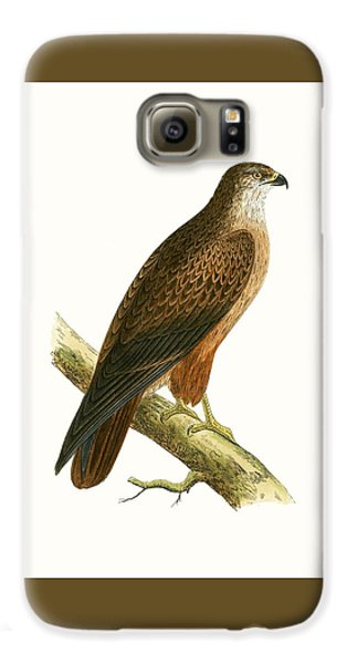 African Buzzard Galaxy S6 Case by English School