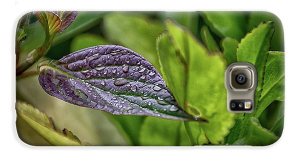 After The Rain Galaxy S6 Case