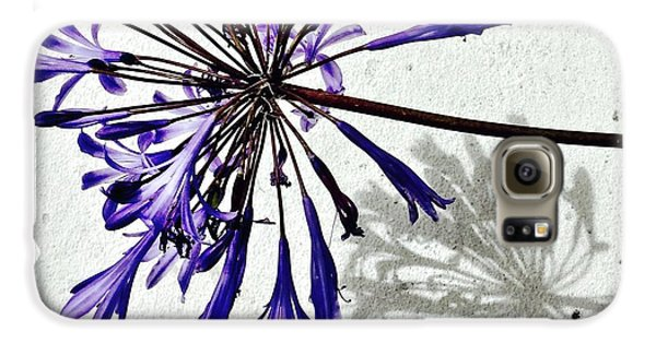 Agapanthus Galaxy S6 Case