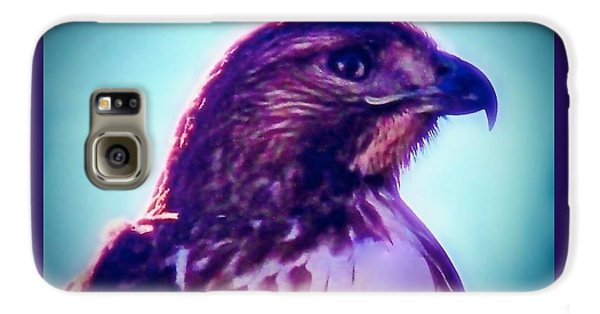 Ak-chin Red-tailed Hawk Portrait Galaxy S6 Case