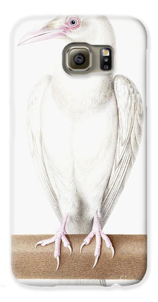 Albino Crow Galaxy S6 Case