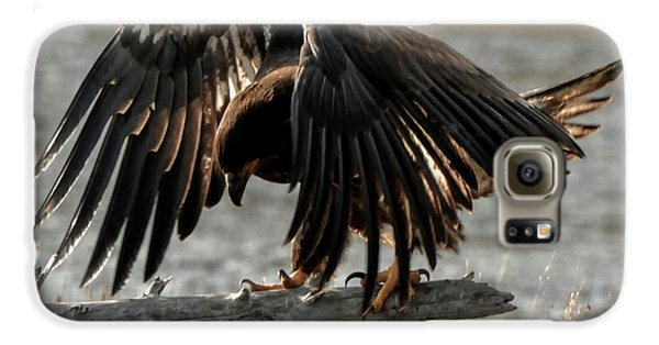 All Feathers Galaxy S6 Case