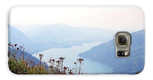 Alpine Flora On Top Of Schynige Platte Galaxy S6 Case