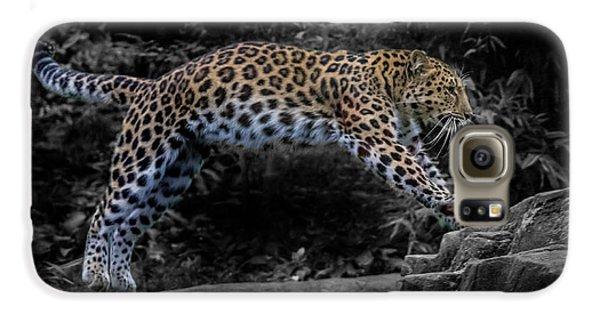 Amur Leopard On The Hunt Galaxy S6 Case