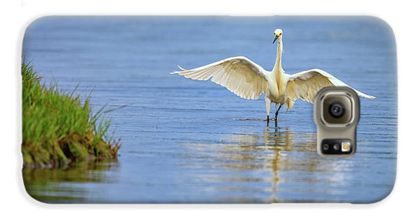 An Egret Spreads Its Wings Galaxy S6 Case
