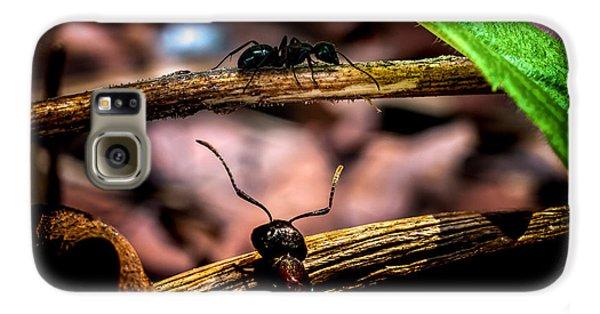 Ants Adventure Galaxy S6 Case by Bob Orsillo
