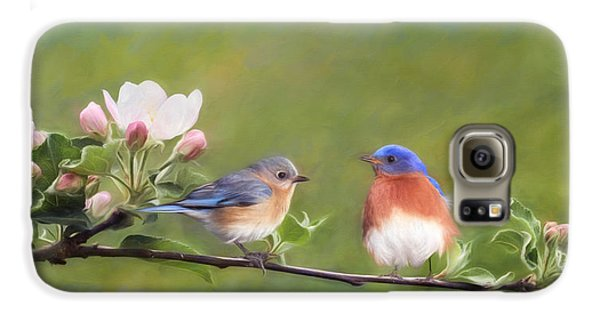 Apple Blossoms And Bluebirds Galaxy S6 Case