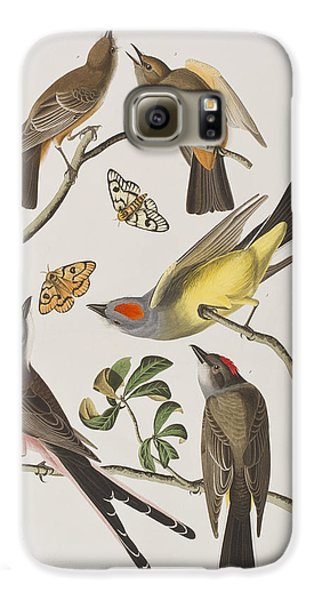 Arkansaw Flycatcher Swallow-tailed Flycatcher Says Flycatcher Galaxy S6 Case
