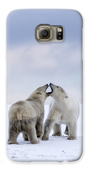 Artic Antics Galaxy S6 Case