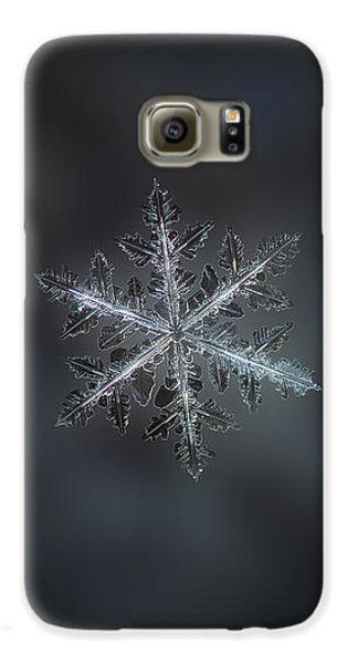 Leaves Of Ice II Galaxy S6 Case by Alexey Kljatov