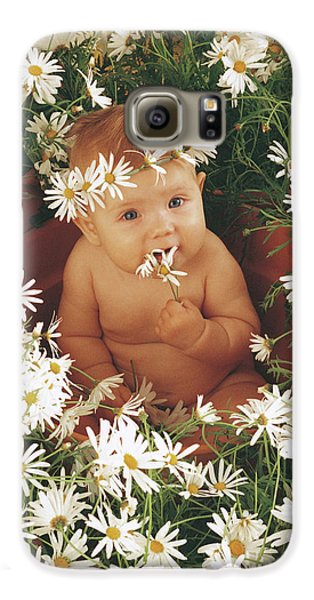 Daisies Galaxy S6 Case by Anne Geddes