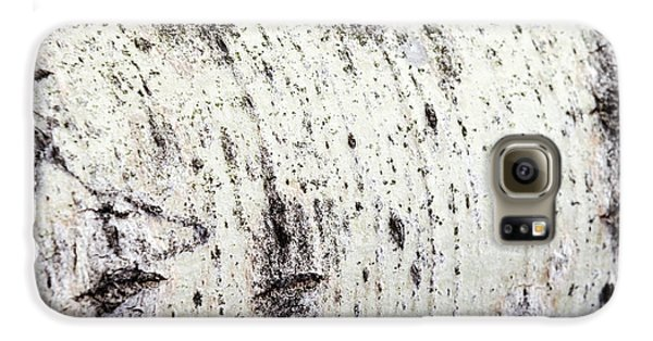 Galaxy S6 Case featuring the photograph Aspen Tree Bark by Christina Rollo