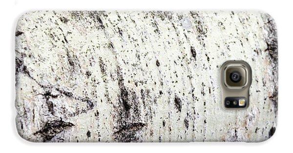 Aspen Tree Bark Galaxy S6 Case by Christina Rollo