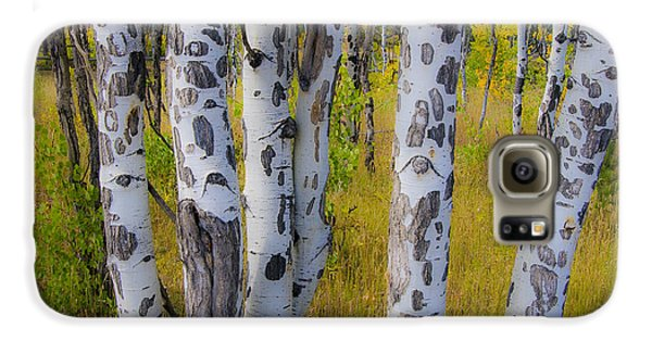 Galaxy S6 Case featuring the photograph Aspens by Gary Lengyel