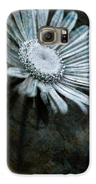 Aster On Rock Galaxy S6 Case by  Onyonet  Photo Studios