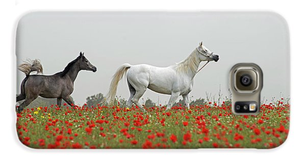 At The Poppies' Field... Galaxy S6 Case