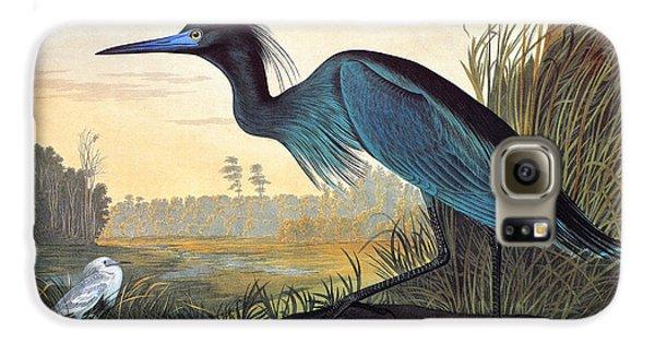 Audubon: Little Blue Heron Galaxy S6 Case by Granger