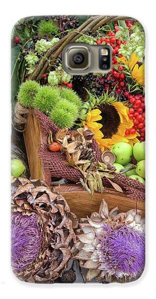 Autumn Abundance Galaxy S6 Case by Tim Gainey