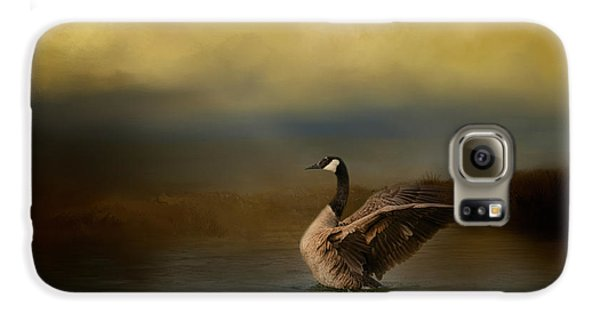 Autumn Afternoon Splash Galaxy S6 Case by Jai Johnson